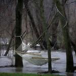 Leadership Reset: Image is hammock in a rainy woods.