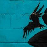 Creepy Communication: Image is black raven against shadow blue.